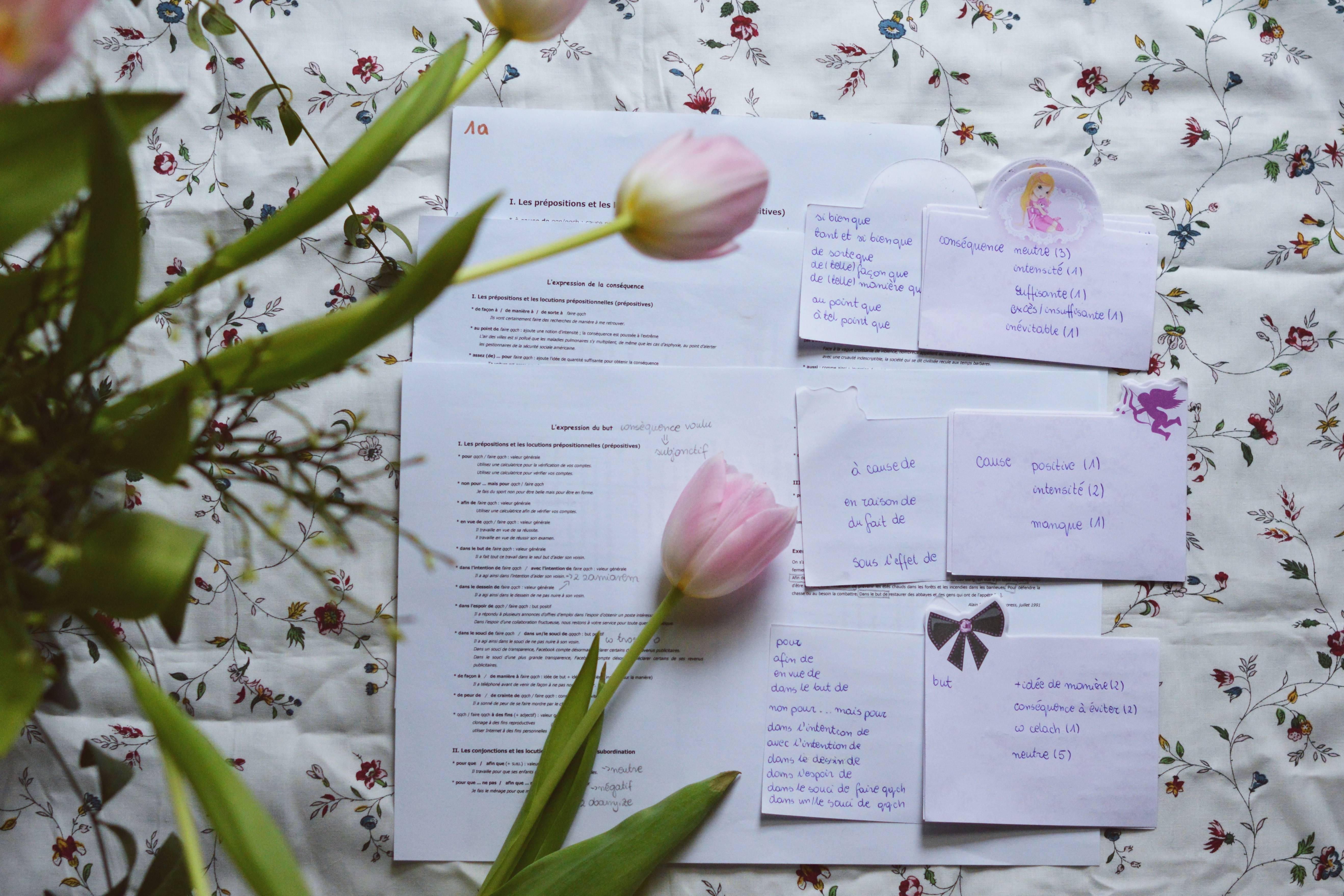 Jak wykorzystywać fiszki w nauce gramatyki?
