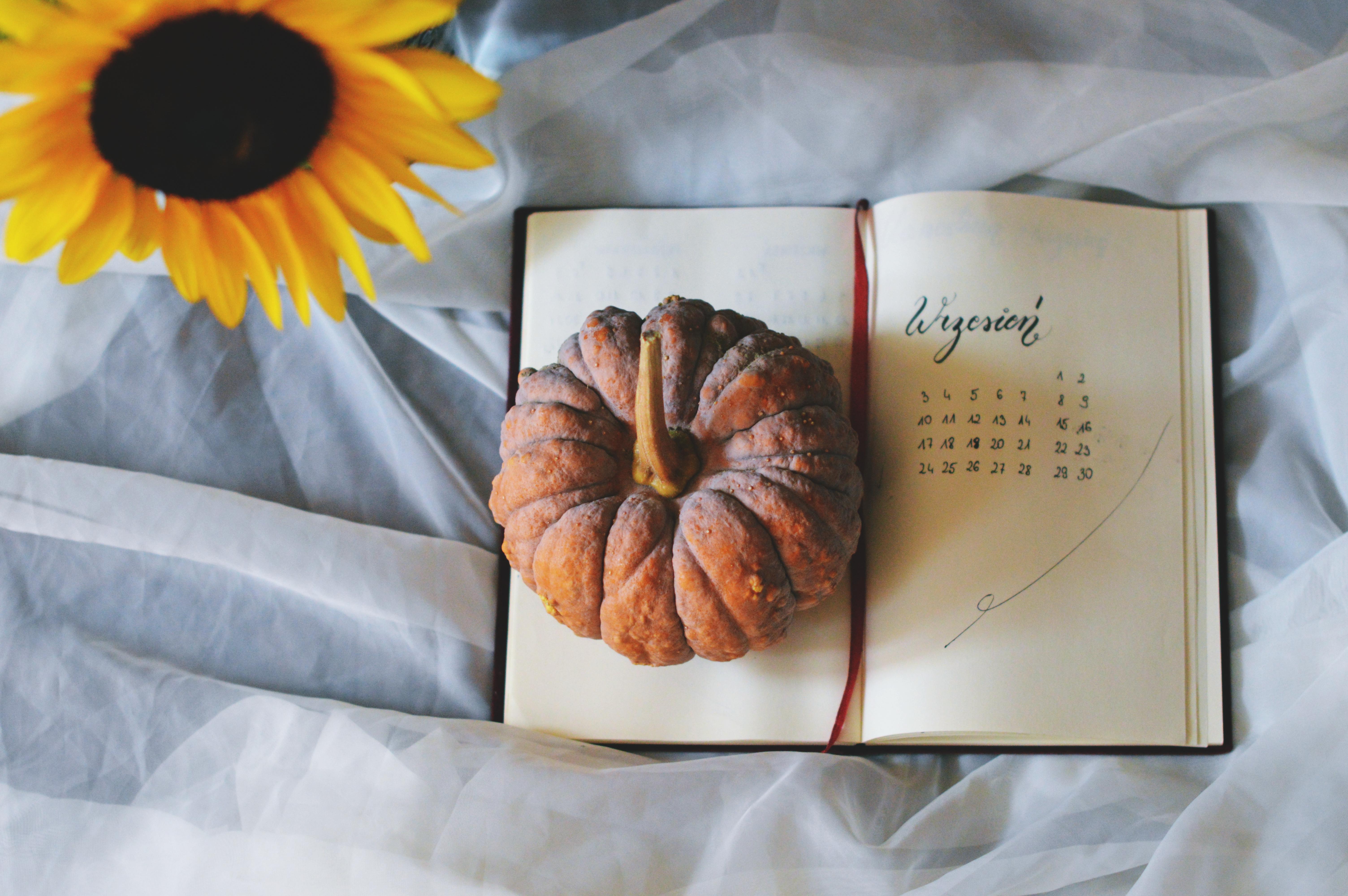 Małe cele na wrzesień + mój bujo