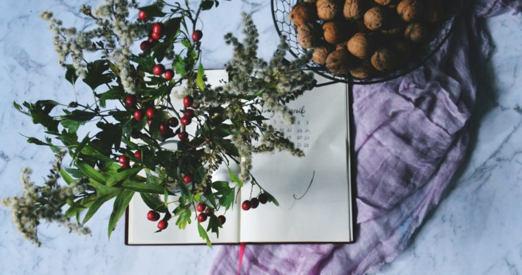 Studenckie bujo na nowy semestr + jesienna ramówka Clanestiny