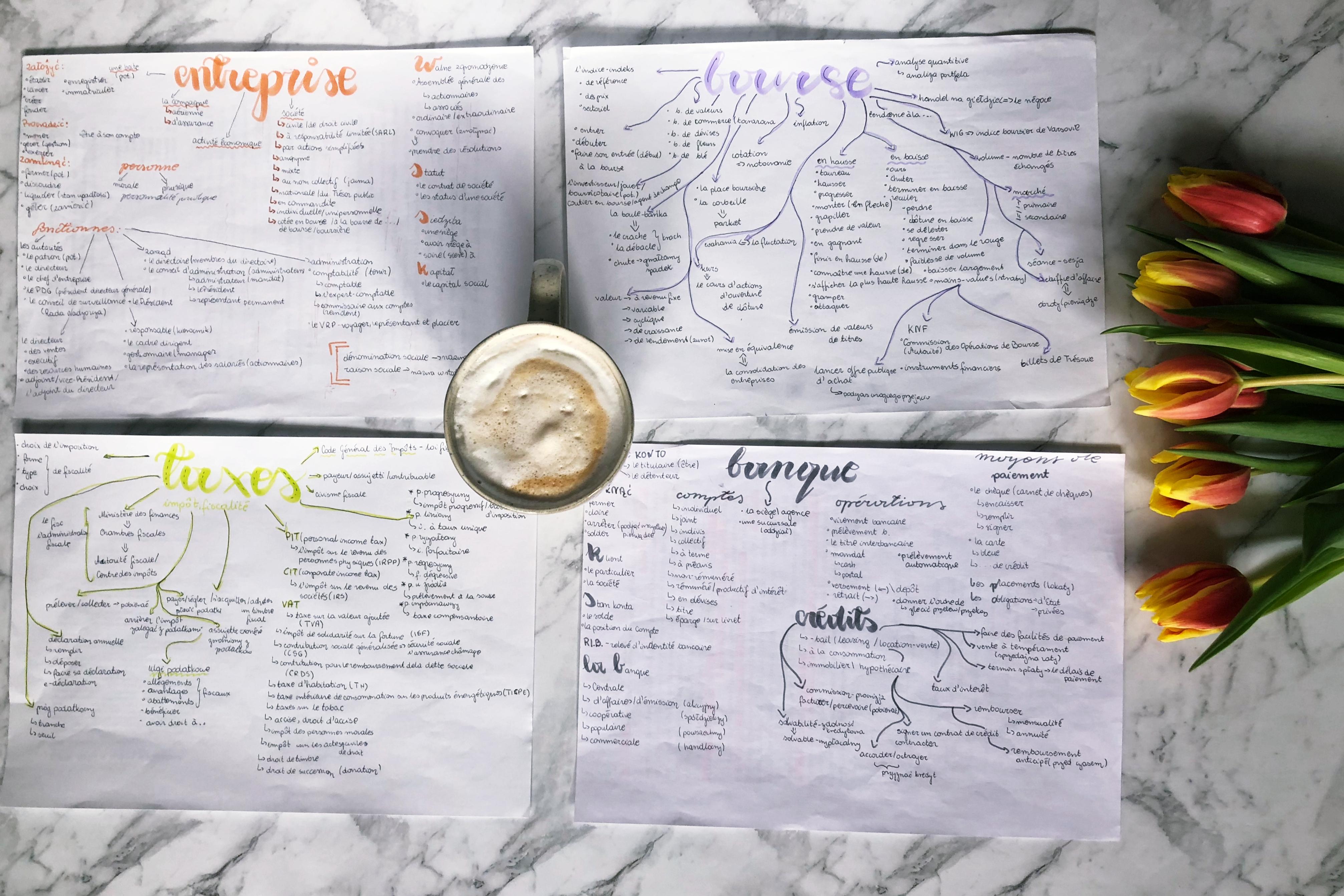 Jak wykorzystać mapy myśli do nauki słownictwa?