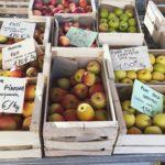 Jak kupować taniej i sprytniej? – miesiąc za 100€