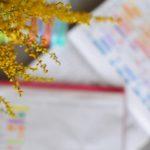 Habit tracker - magia kolorowanych kratek