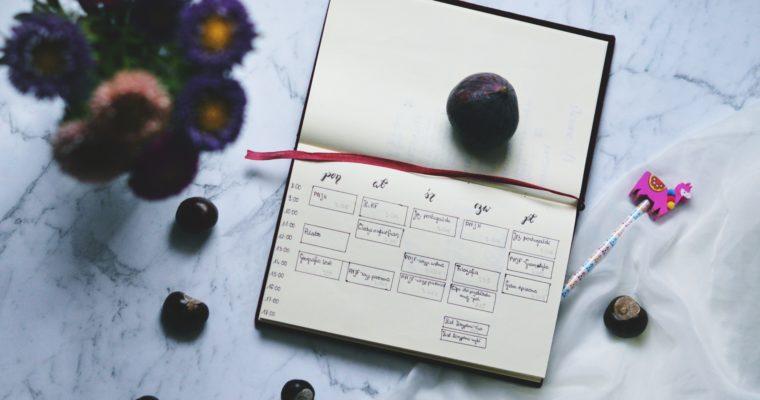 Plan zajęć na studiach – instrukcja obsługi
