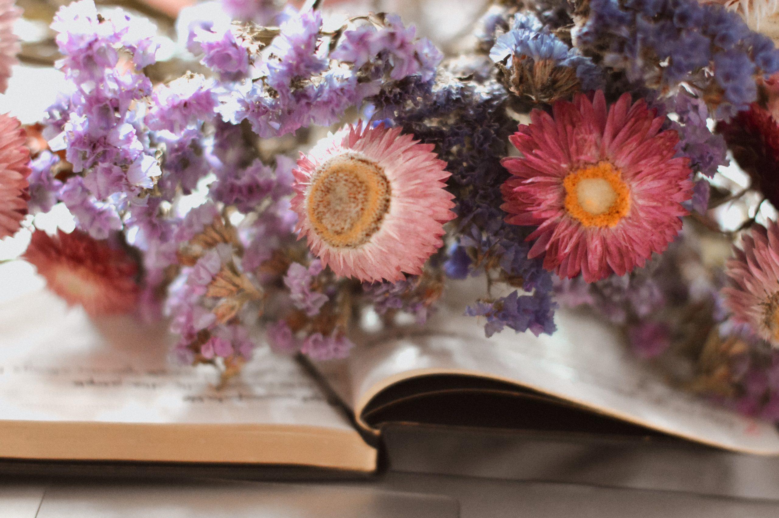 notes, suszone kwiaty, zatrwiany