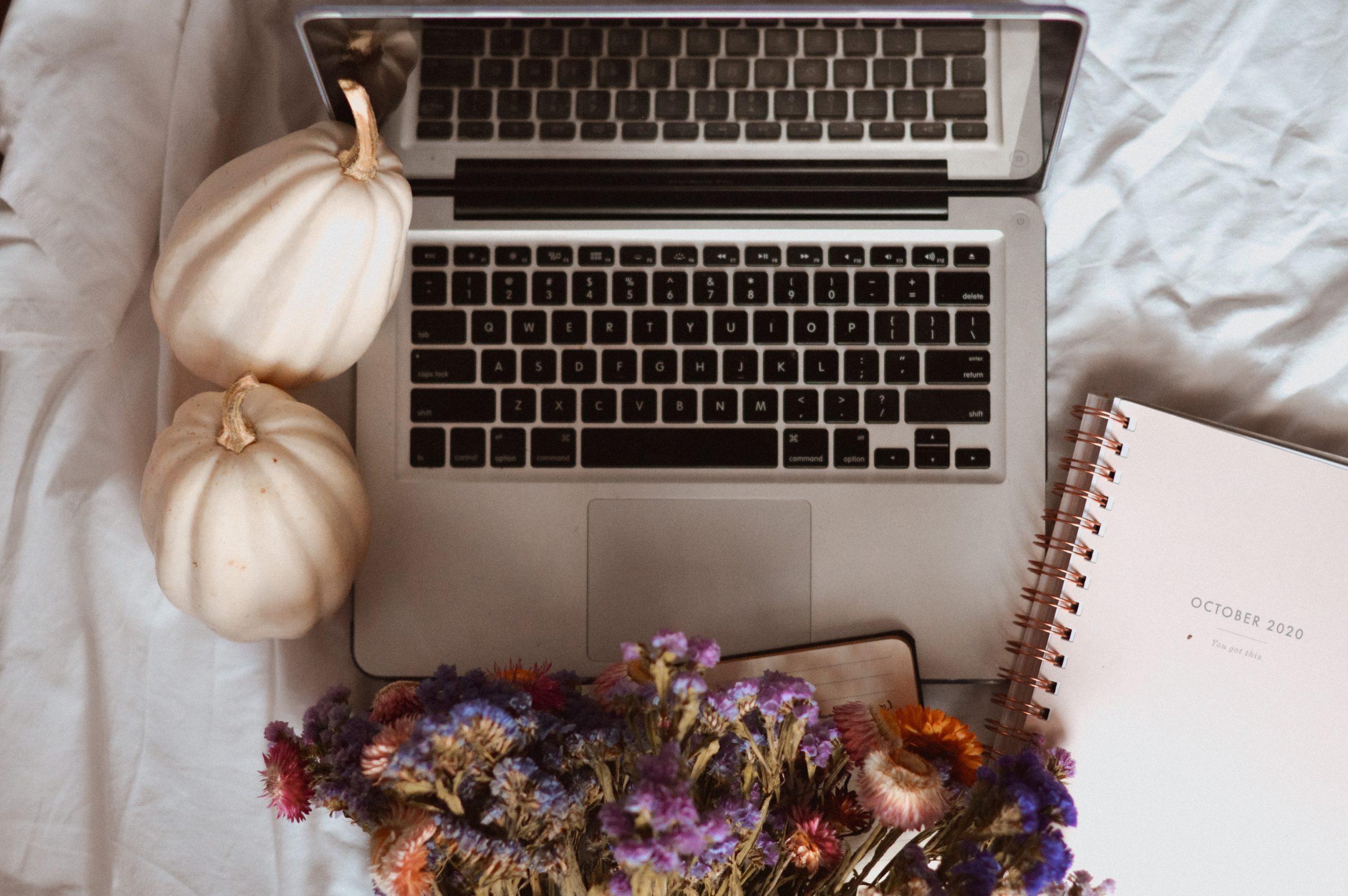 laptop, jesień, white pumpkin, biała dynia, study blog